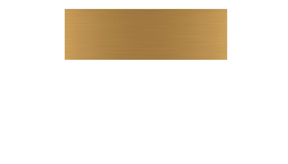 Mr Voss Logo